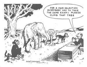 differentiation 1